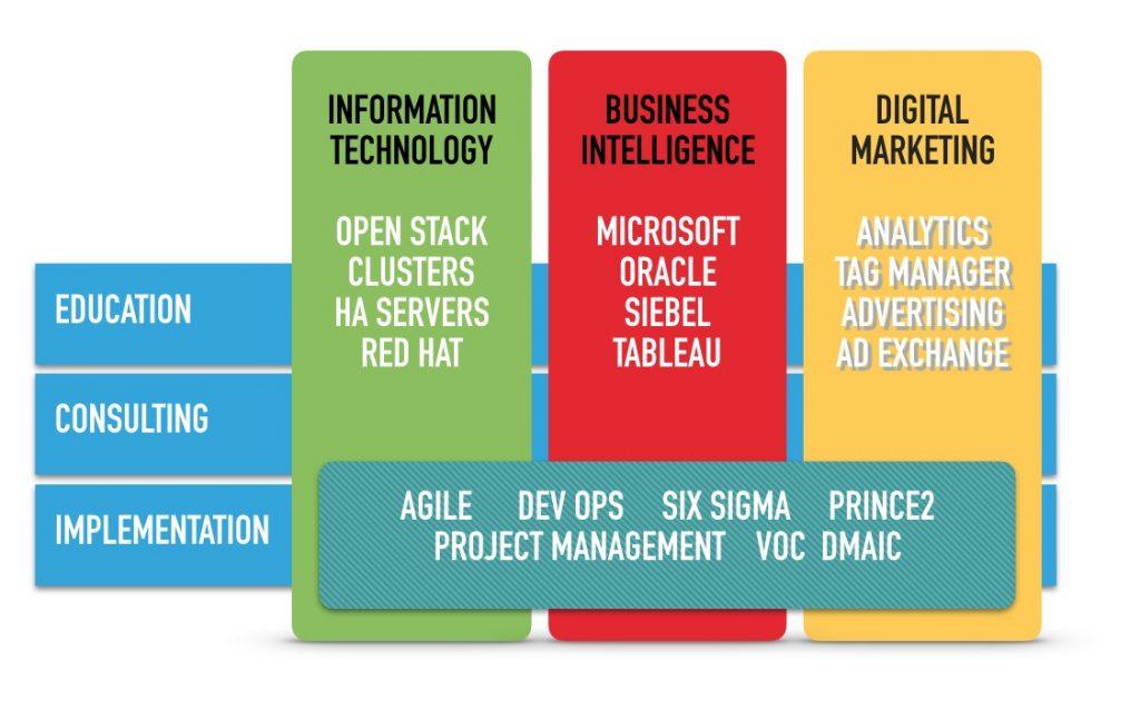 Vertikale i segmenti usluga - konsultantska agencija